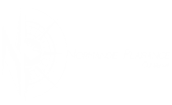 NORMANDIE PLAISANCE logo